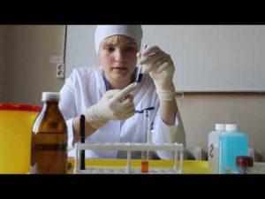 Лаборатория исследования меда москва