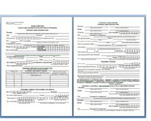 Заявление на выдачу приглашения для иностранного гражданина