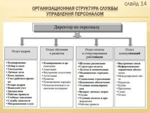 Кадровый отдел и службы управления персоналом отличия