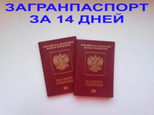 Загранпаспорт новосибирск сколько времени