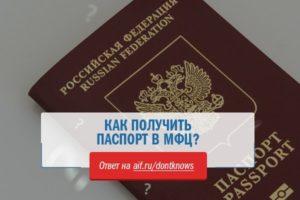 Как получить загранпаспорт в екатеринбурге через мфц цена