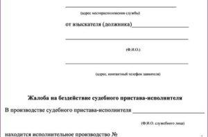 Заявление в суд на судебных приставов за неисполнение решения суда