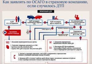 Закон об осаго европротокол