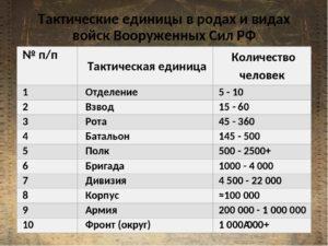 Рота сколько человек 1942
